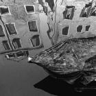 11 Venezianische Spiegelung II - Venedig 2014  © Wilfried Gebhard www.fotowege.de