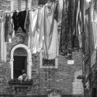 30  Alles im Blick - Venedig 2014  © Wilfried Gebhard www.fotowege.de